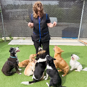 Shondra with dogs